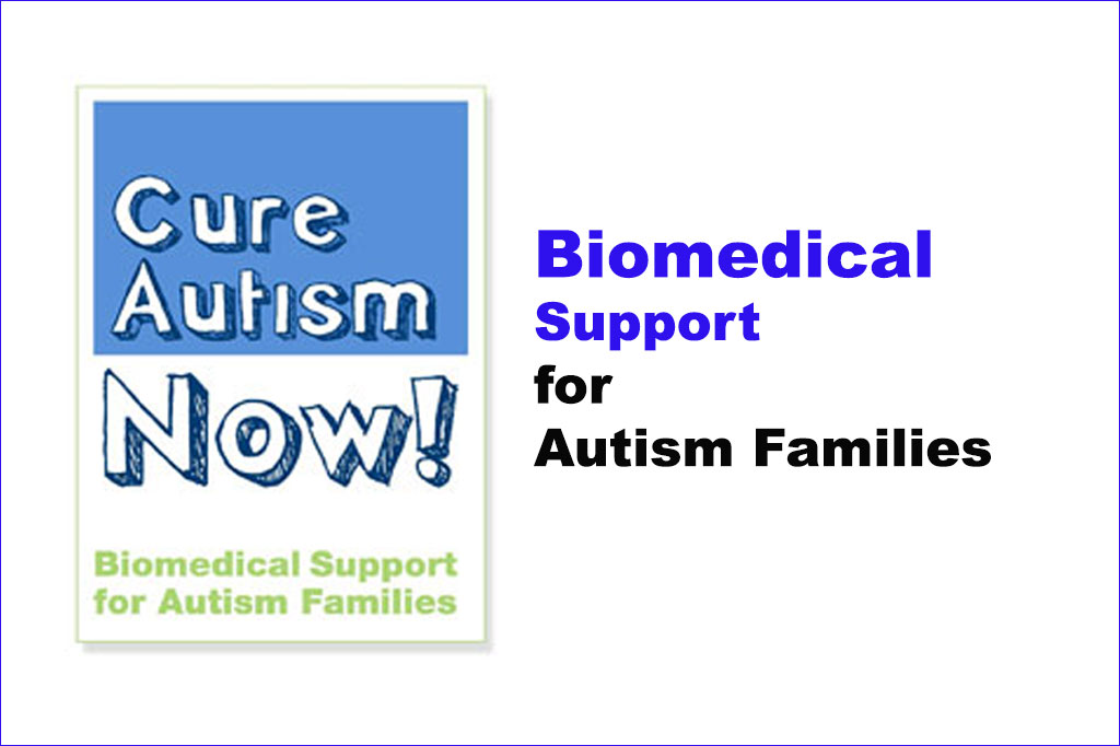 Biomedical Support logo